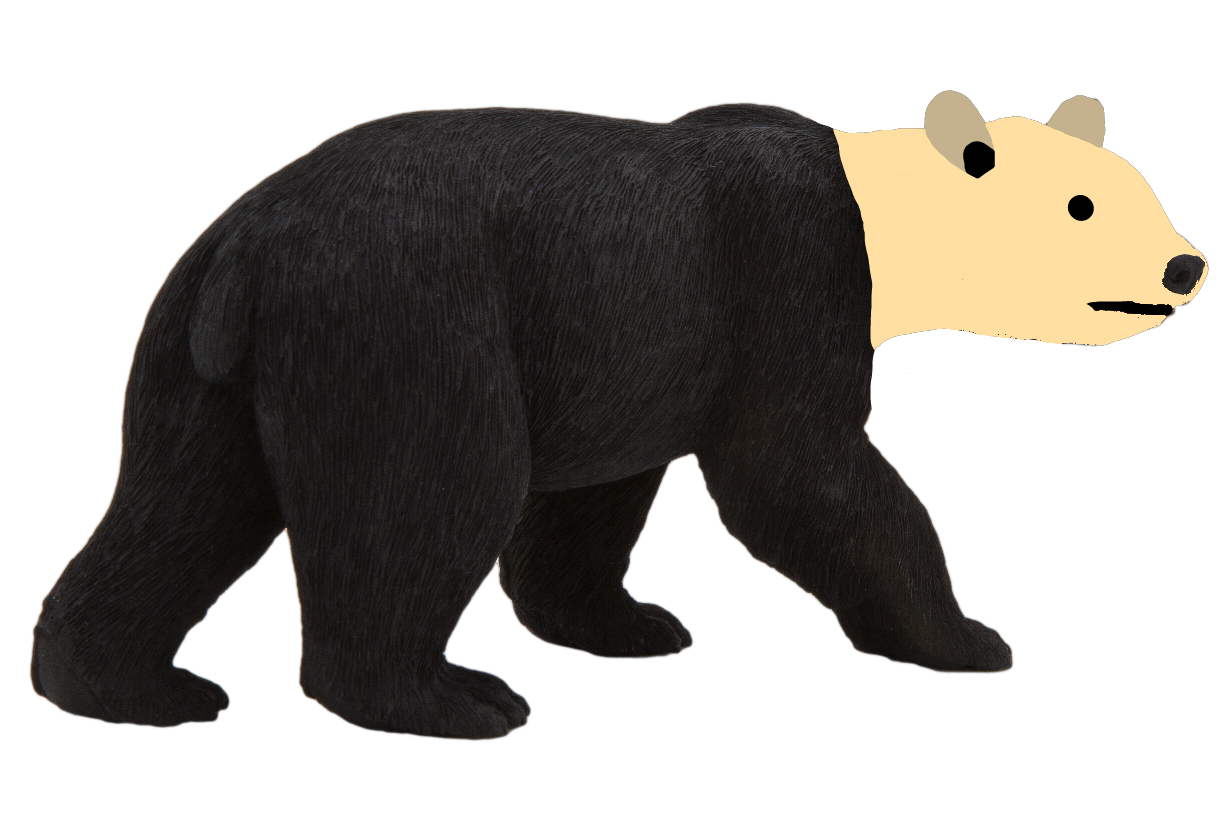 Vulturine Bear