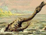 Carnovorosaurus
