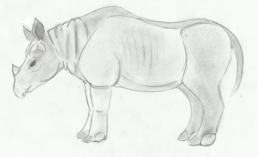 Oriental Rhinoceros (SciiFii)