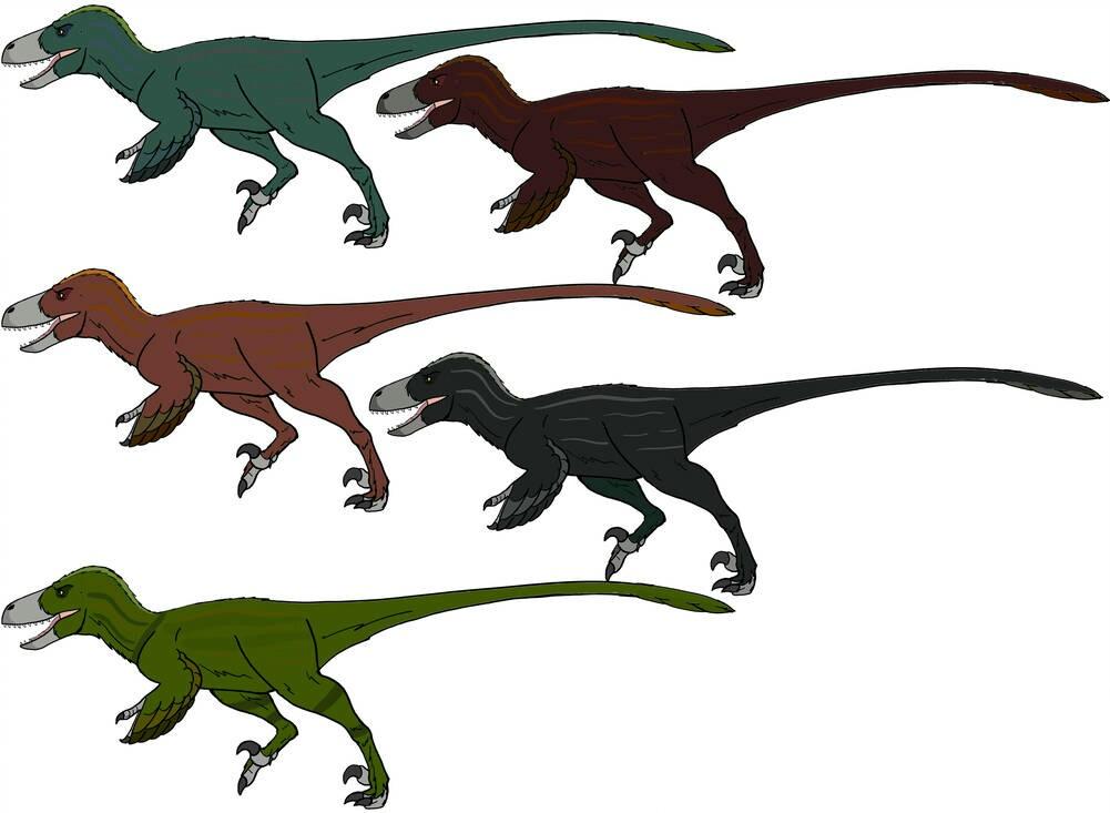 Venatoraptor