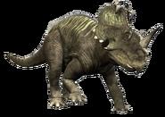 Modern Day Centrosaurus