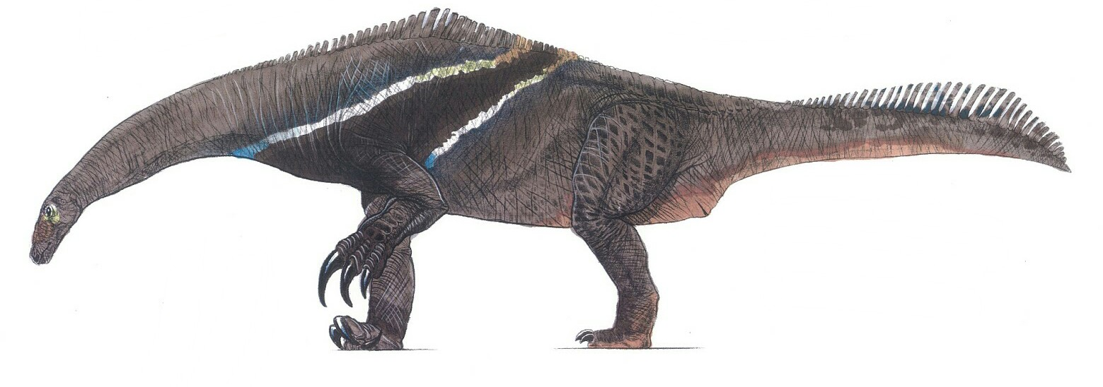 Megalonyxosaurus
