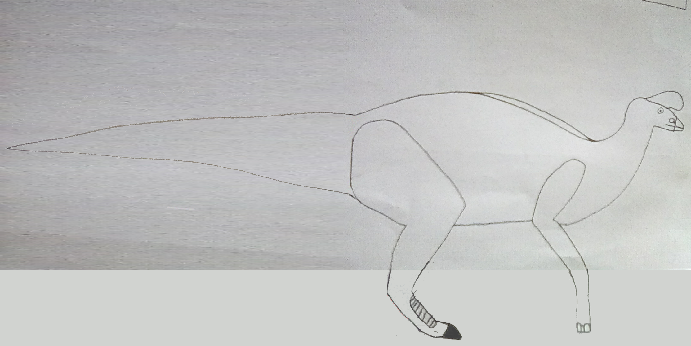 Donnosaurus