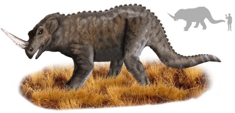 Tricerhinoceros