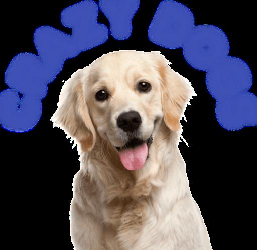 Crazy Dogs (TV show)