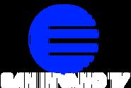 San Invano TV