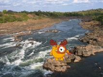Лосяш в Анголе.jpg