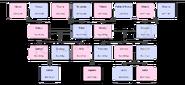 Aquena-drzewo-genealogiczne
