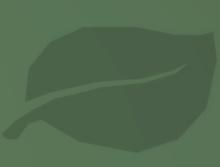 Leaf Icon.png