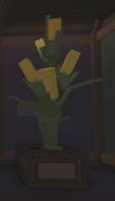 GiantCornThePlantRoom