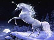 Единорог в ночи