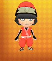 Ninja Outfit Example.png