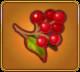 Antidote Berries