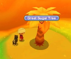 Great Sugar Tree