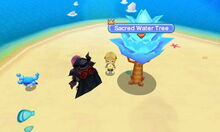 Sacred Water Tree.JPG