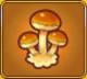 Forest Mushroom