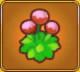 Energising Flower