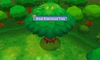 Great Elderwood Tree