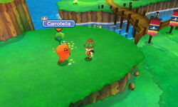 Carrotella.JPG