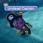 Undead Captain