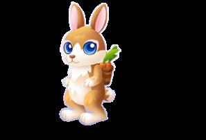 Bountiful Bunny