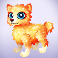Dazzle Cat