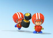 Toad Mechanics