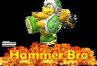 1.3.BMBR Hammer Bro Alts 0