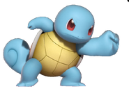 1.5.Squirtle Punching