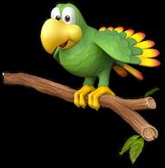 Squawks TropicalFreeze