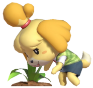 0.9.Isabelle Plucking a Weed
