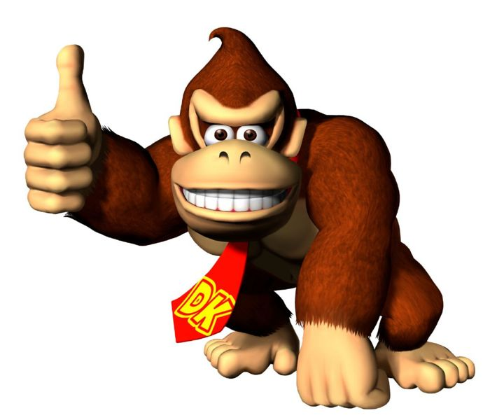 Donkey Kong Country D.I.Y.