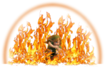 0.2.Young Link Using Dins Fire