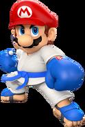 MSOGT Mario Karate