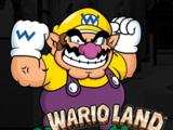 Wario Land: Switch it Up!