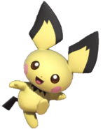 2.4.Pichu is Excited