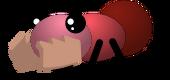 Wild Red Ant