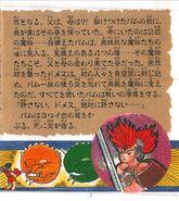 Fire Bam Japanese Manual 5
