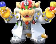 Dr. Bowser - Dr. Mario World
