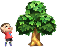0.3.Red Villager looking at a Tree