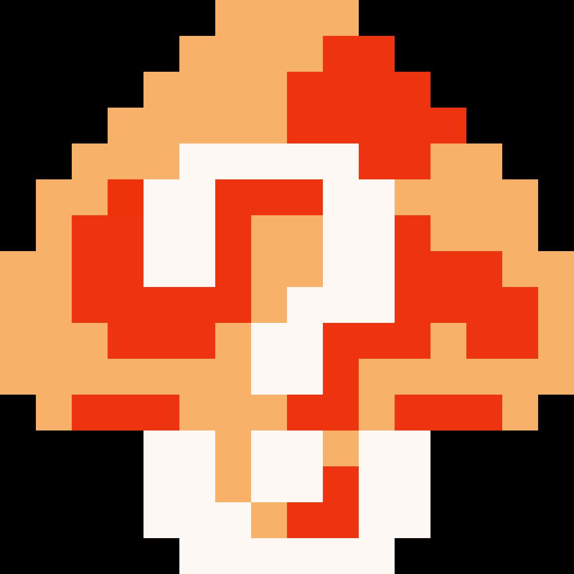 Costume Mario/Canon Costumes