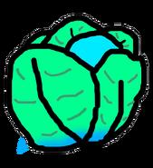 Slo-Go Cabbage