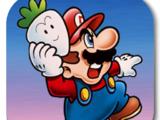 Super Mario Bros. 2 (mobile)