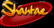Shantae series logo DSSB.png