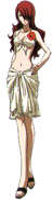 Mitsuru Swimsuit