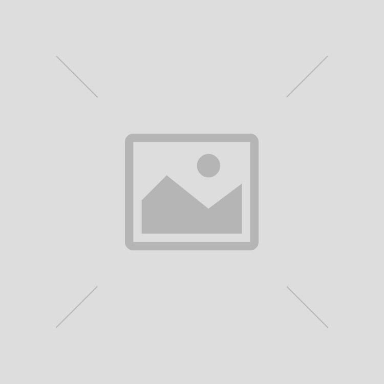 Animal Crossing: Forging Valley