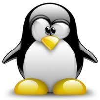 Pingouin.jpg