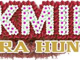 Pikmin: Ultrahunt