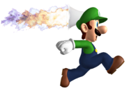 RocketFlowerluigi