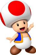 Toad MKR